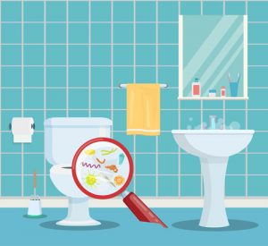What Types Of Bacteria ARE On Toilet Seats?